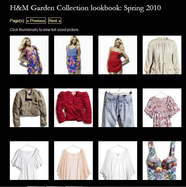圖十一 H&M—garden collection圖十二H&M 2009—2013獲利狀況