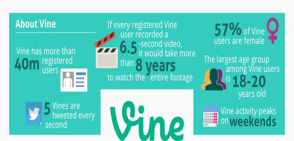 圖四 vine主要使用者分析